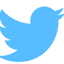 Twitter Connect logo